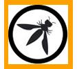 zdresearch owasp