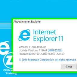 Internet explorer version detection & ROP genration